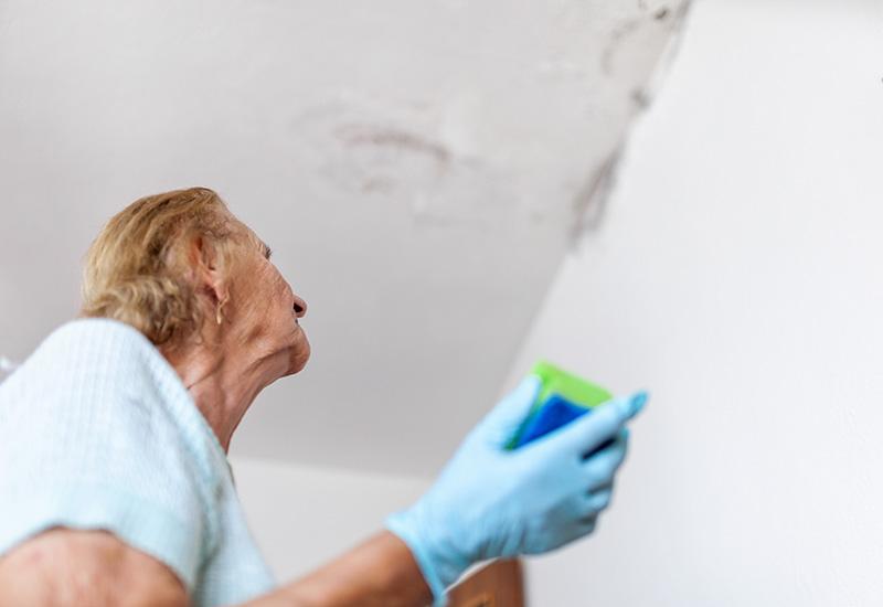 Limpieza de hongos peligrosos de una pared húmeda después de una fuga de agua